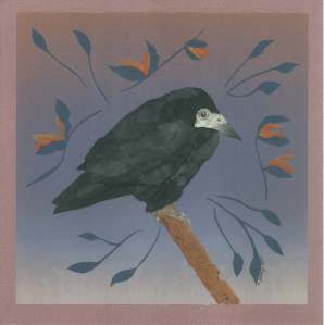 Chicken, Esther Woolfson's Rook
