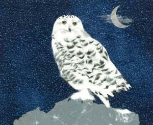 Snowy Owl, paper collage, 2013