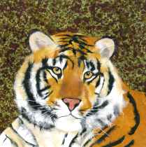 Tiger Portrait, Paper Collage, Constance Perenyi, 2013.